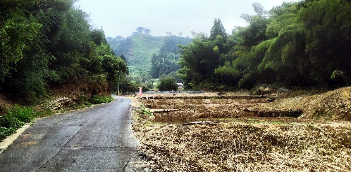 月山の登山口から山中御殿に向かう道。山中御殿の少し手前までは自動車も通行可能。